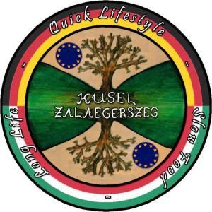 logo_PASZI